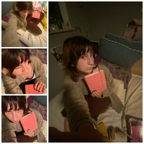 Sydney and THE pink journal